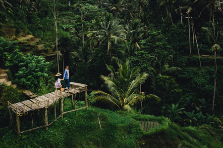 Couple standing on wooden bridge near rice terraces in Bali Indonesia. Holding hands. Romantic mood. Tropical vacation. Aerial shot. On background coconut palm trees.