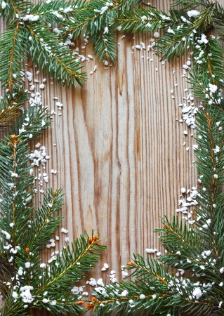 Christmas spruce branch frame with snow. photo