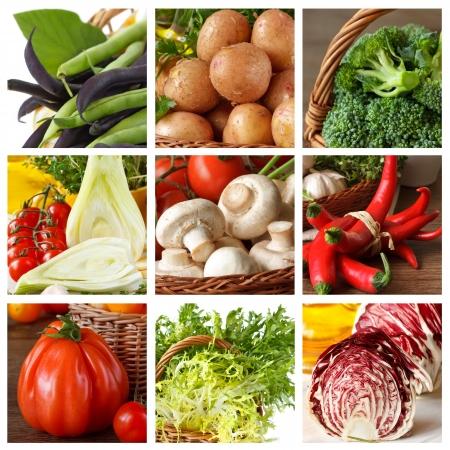 endivia: Colección de verduras frescas maduras.