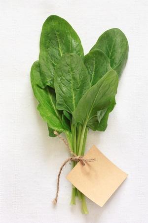 Frische grüne Spinatblätter auf einem weißen Tuch mit einem Etikett Standard-Bild
