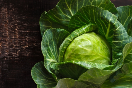 the cabbage: Fresh kitchen garden cabbage with water drops on a wooden background