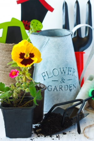 Beautiful garden flowers, tools and old watering can  photo