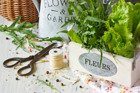 Fresh herbs and aromatic spices on an old wooden board. photo