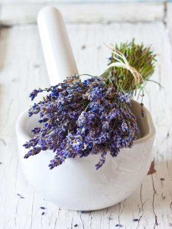 herbs of provence: Bunch of lavender flowers and white mortar.