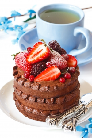 Delicious chocolate cake with cream and berries and cup of tea on a white. photo