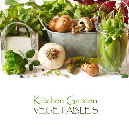 新鮮な家庭菜園野菜とハーブ。