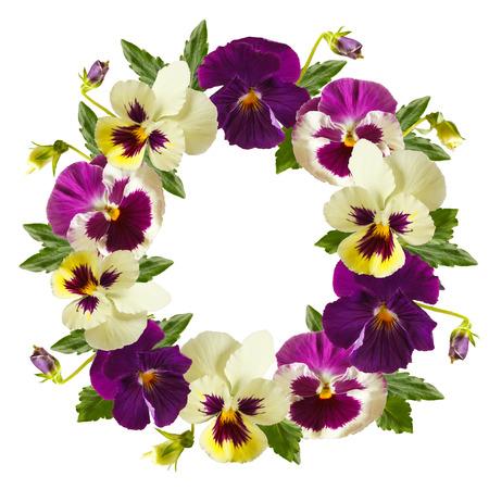 白い背景の上の美しいパンジー花の花輪。花のフレーム。
