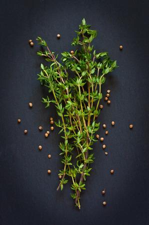 cilantro: Manojo de tomillo fresco con semillas de cilantro sobre un fondo negro