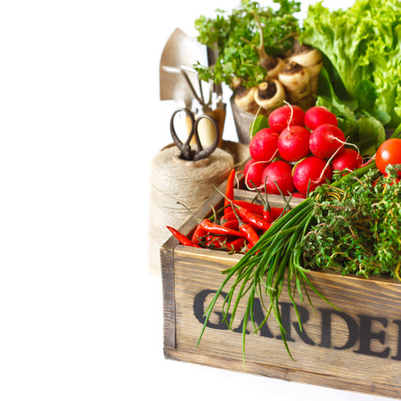 Fresh organic kitchen garden vegetables on vintage wooden box on a white close-up. photo