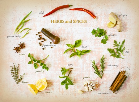 Colorful herbs and spices with tags for cooking food on old vintage 写真素材 - 120391373