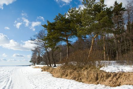 Coast of Finland Gulf in early spring, Komarovo, Russia Stock Photo - 5093770
