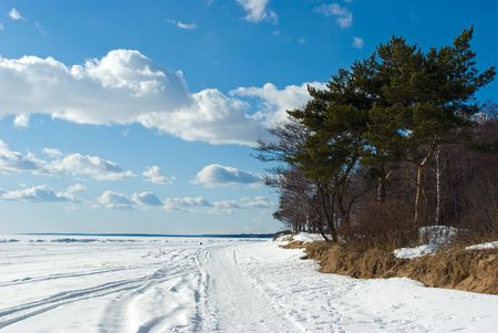 The Gulf of Finland coast in early spring in Komarovo, Russia photo