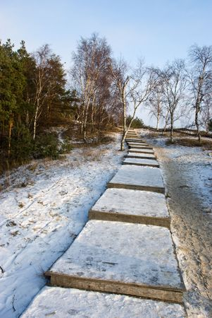 Path to Epha dune top in winter. Curonian spit. Russia Stock Photo - 6494687