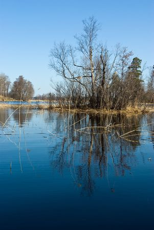 isthmus: Vuoksi river spring landscape, Karelian Isthmus, Russia