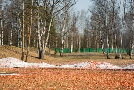 Skeet shooting ground covered broken targets