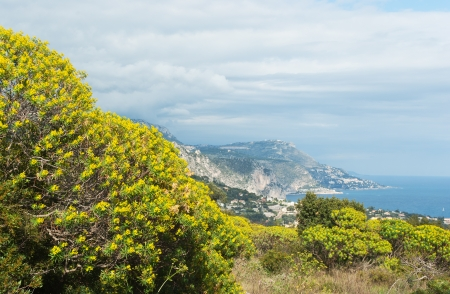 View of Villefranche-sur-Mer from Mont Boron hill, Nice, France