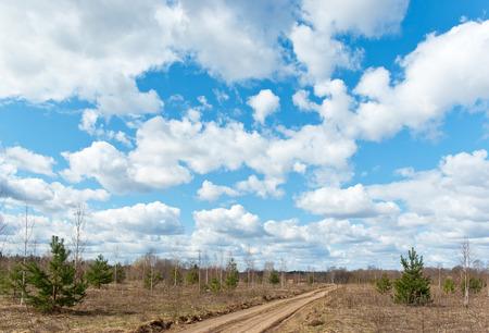 Rural spring landscape in Novgorod Oblast, Russia
