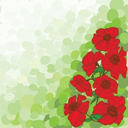poppy flower on green Vector