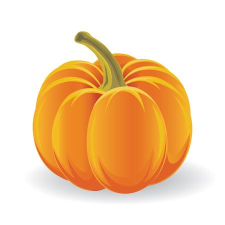 Scary Halloween pumpkin isolated on white  Illustration