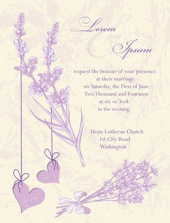 Wedding invitation card, flyer design, packaging design. Lavender background, product labels. Vector illustration. Vector