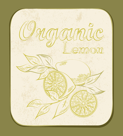 Fresh Organic Lemon Label. Vector illustration. Retro fruitl design. Vector old paper texture background. Vector