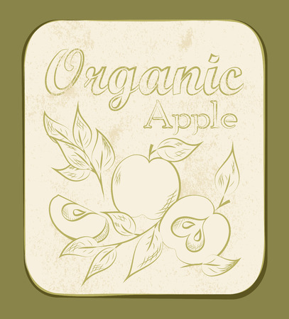 Fresh Apple Orange Label. Vector illustration. Retro fruitl design. Vector old paper texture background. Vector