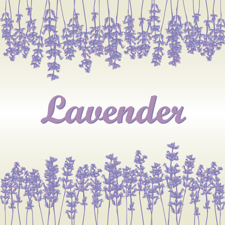 Lavender background, product labels. Business or invitation card, flyer design, packaging design. Vector illustration.
