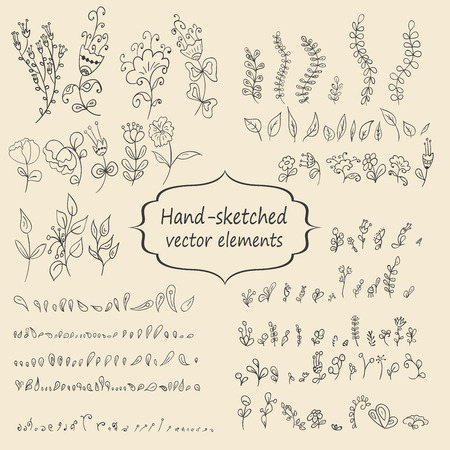 illustratin: Hand sketched vintage floral elements for your design. Set of flowers and leaves. Vector illustratin.