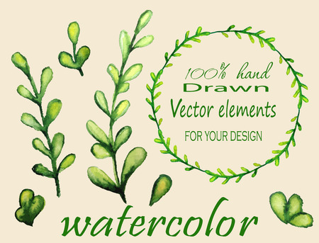 Hand drawn vintage floral elements. Set of watercolor branches. Vector illustration. Vector