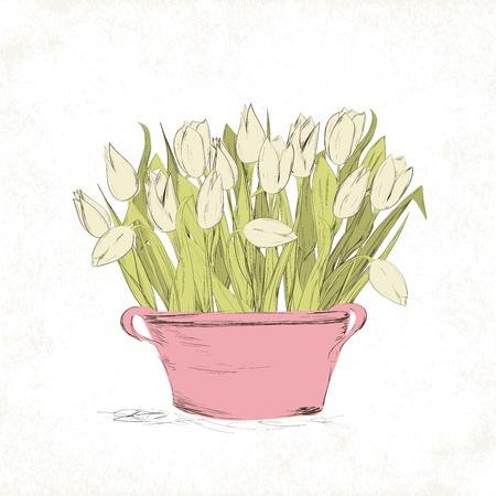 Hand drawn spring tulip flowers in vintage pot. Vector illustration