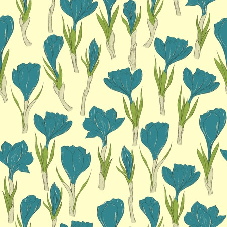crocus: Seamless pattrn with hand drawn spring crocus flowers. Vector illustration
