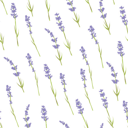 Seamless pattern with hand drawn lavender flowers . Hand drawn design for Thank you card, Greeting card or Invitation. Vector illustration.