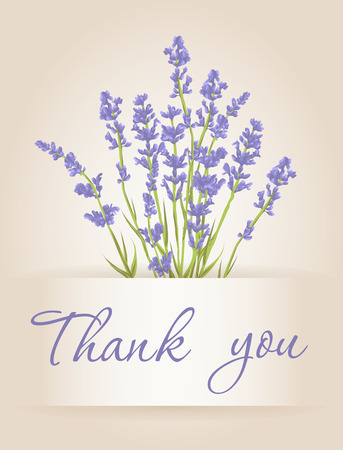 Thank you card with purple lavender flower. Vintage background. Vector illustration. Stock Illustratie