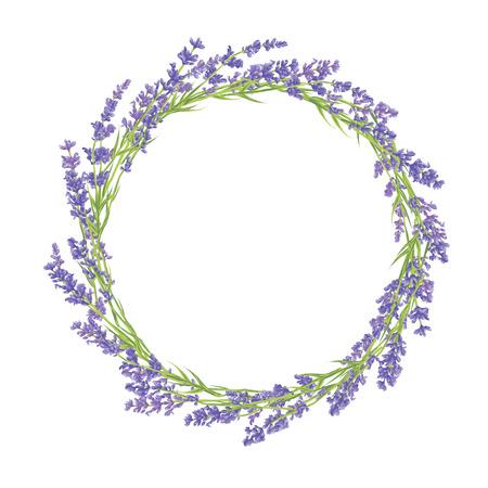 Circle of disegnati a mano fiori di lavanda. Disegno a mano di design per Biglietto di ringraziamento, auguri o invito. Illustrazione vettoriale.