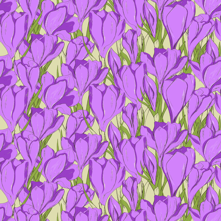 crocus: Seamless pattern with hand drawn crocus spring flowers.
