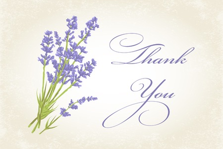 Thank you card with purple lavender flower. Vintage background. illustration. Çizim