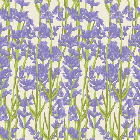 Seamless pattern with lavender flowers .  design for Thank you card, Greeting card or Invitation. illustration. Zdjęcie Seryjne - 54599137