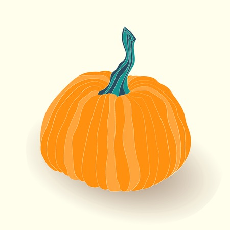 gobble: Pumpkin card. illustration of pumpkin isolated on white background. Illustration