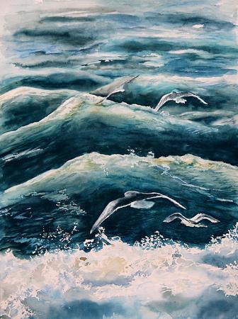 seagull: sea ??waves and seagull
