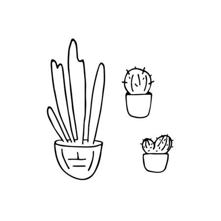 Doodle house plants. Hand drawn pot plants set. Vector illustration. Ilustrace