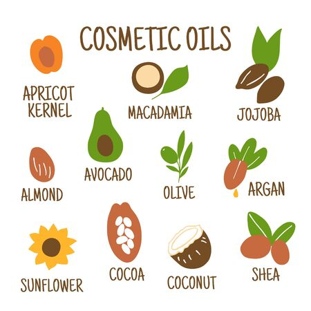 Cosmetic oils. Nuts from which squeeze oils. Nourishing oils for skin beauty. Vector icons.