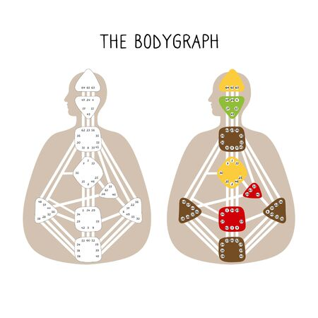 Human Design BodyGraph. Nine colored energy centers. Hand drawn graphic
