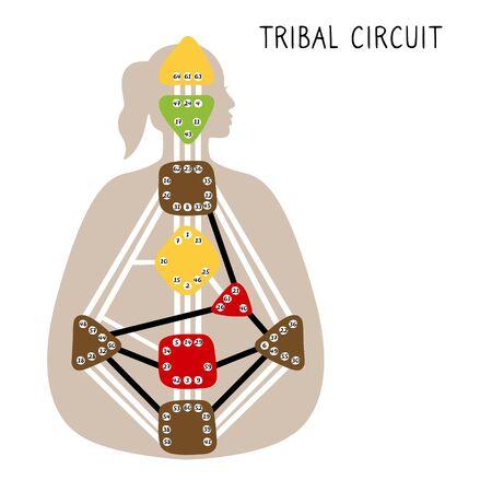 Tribal Circuitry. Human Design BodyGraph. Hand drawn bodygraph chart design. Vector illustration
