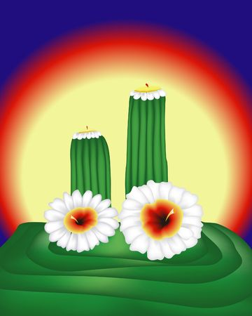 Blooming cactus. Digital illustration. Gradient mesh. Stok Fotoğraf