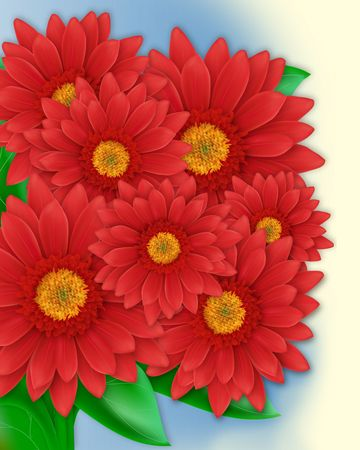 The bouquet of herberas. Digital illustration created with multiple Illustrator tools.