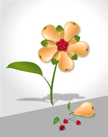 Flower assembled from pears and cherries. Digital illustration. Gradient mesh. Stock fotó