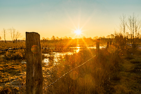 colorful winter sunrise on a field with fence in recker moor germany