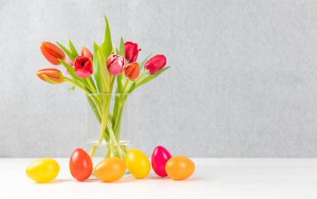 easter eggs with colorful tulips and gray background and copy space Reklamní fotografie