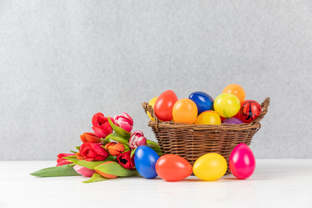 easter nest with colorful eggs and tulips on a gray background Reklamní fotografie