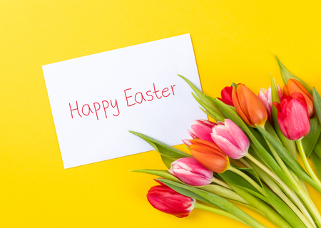 colorful tulips on a yellow background with white paper and text happy easter Reklamní fotografie